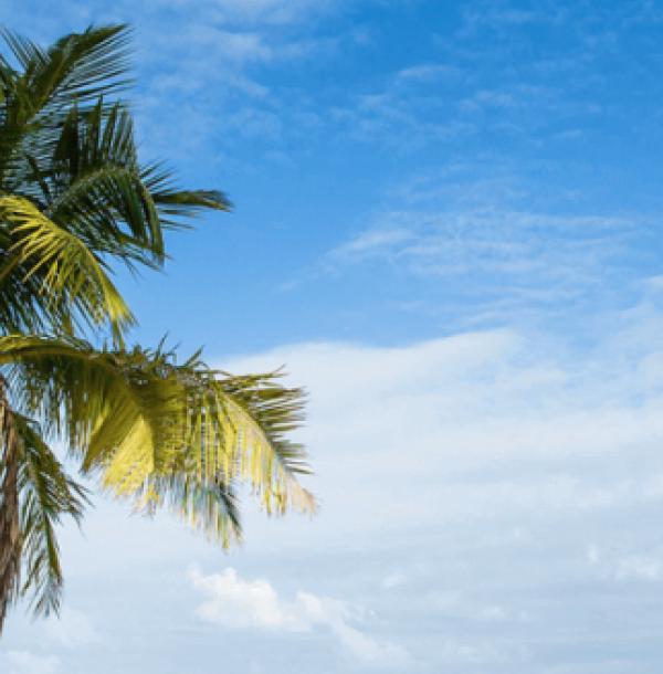 As melhores praias de Maragogi