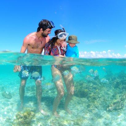 Famílias nas piscinas naturais de maragogi